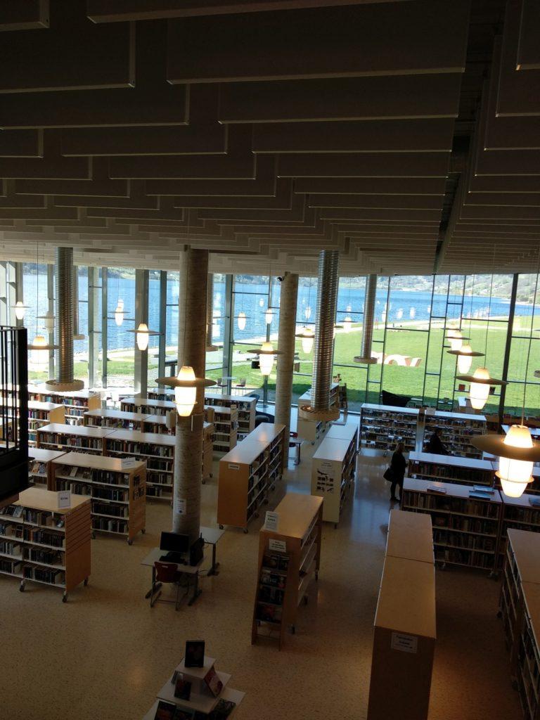 Voso biblioteka