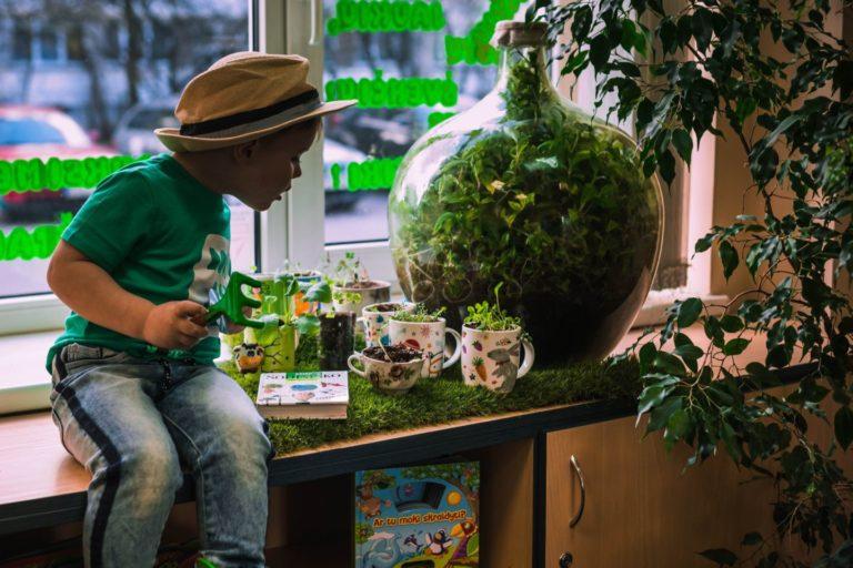 Mano žalioji palangė