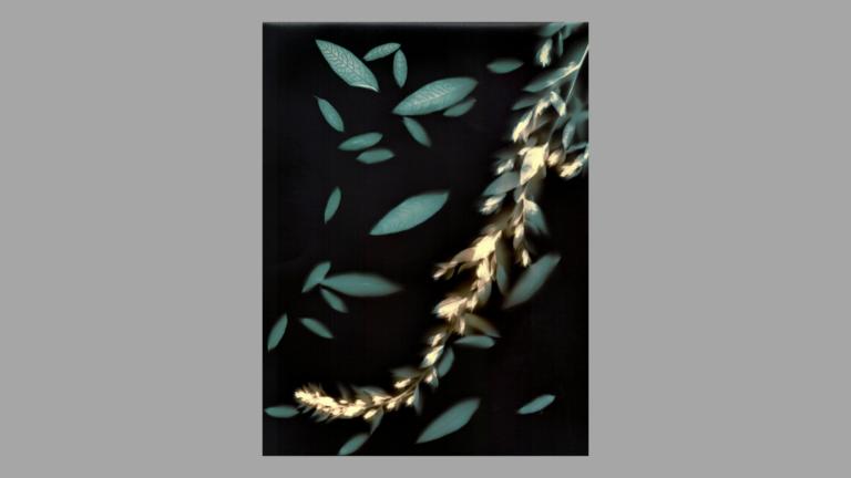 Iliustracijoje: Žilvinas Kropas. Švytėjimas. Iš serijos Liumenograma. 2018